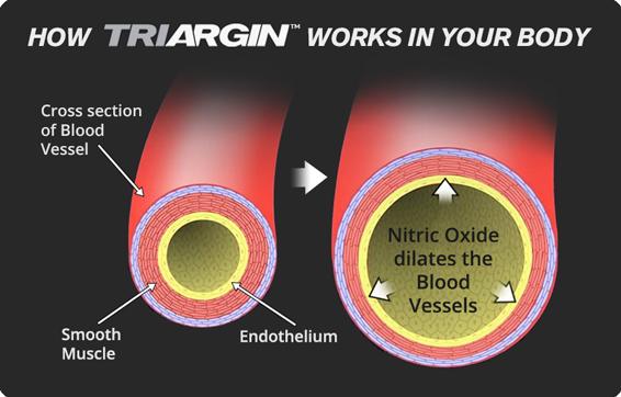 Triargin promotes blood flow/circultation